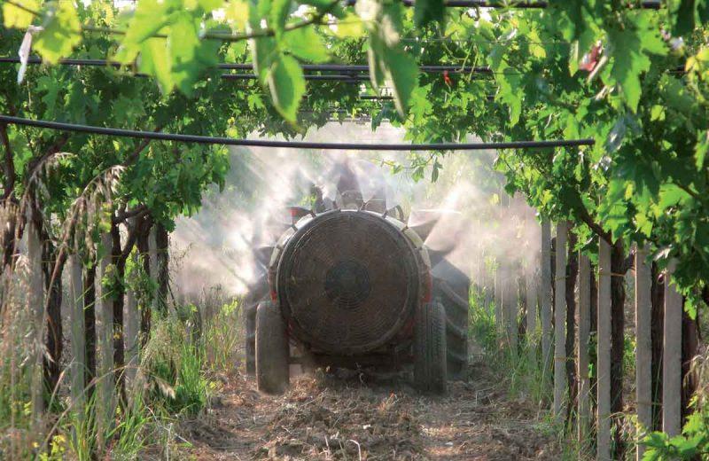 trattamenti-fitosanitari-5
